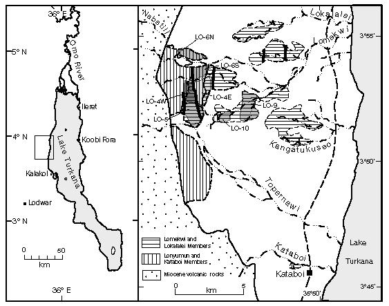 Localización del yacimiento