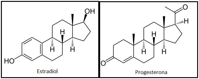 estradiol y progesterona